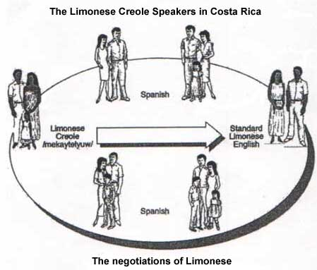 creolization creole language and caribbean Find out information about creolization any language that (2000) s romaine, pidgin and creole languages carnival and drama in the anglophone caribbean.
